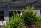 Forest Hill WA Chainlink fencing 13